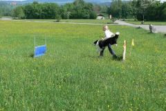 Canin cross Frauenfeld 09006